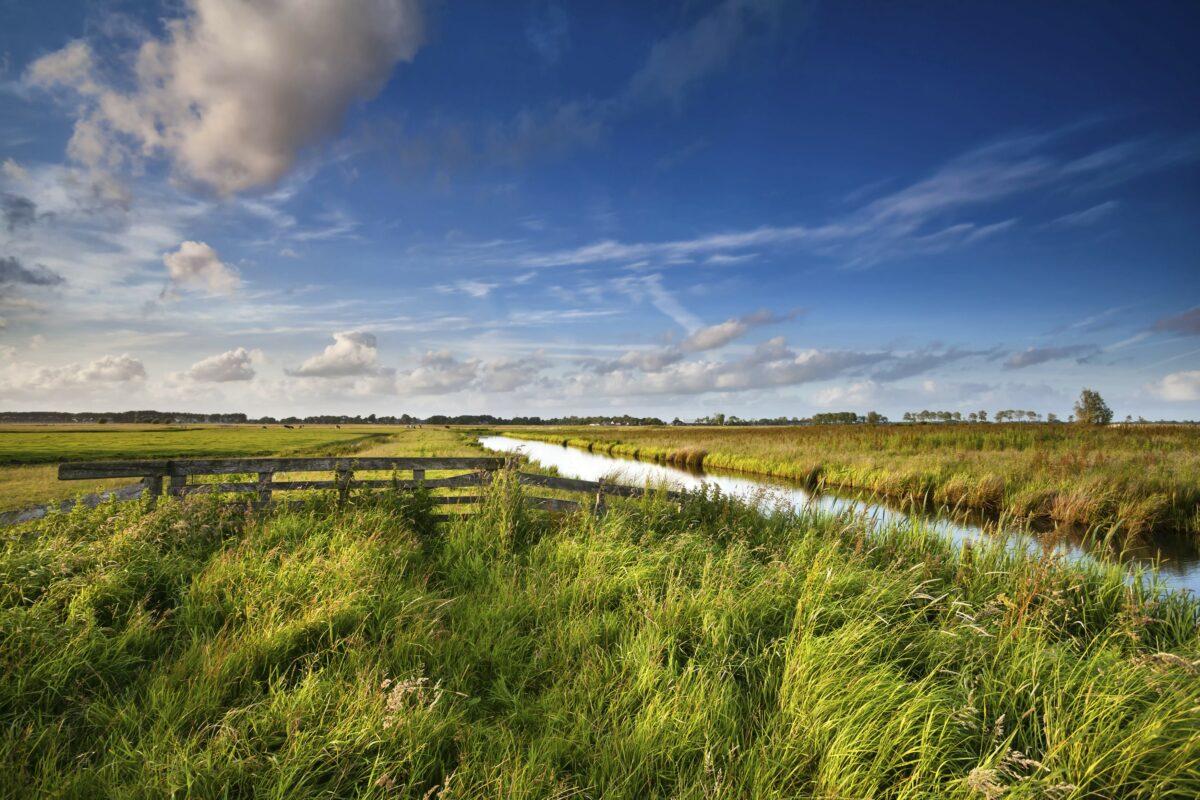 Gezamenlijk reactie op Omgevingsverordening Noord-Holland