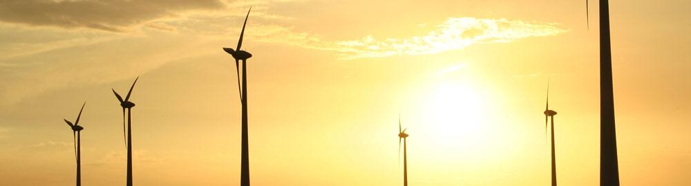 Geef omwonenden aandelen in windmolenpark