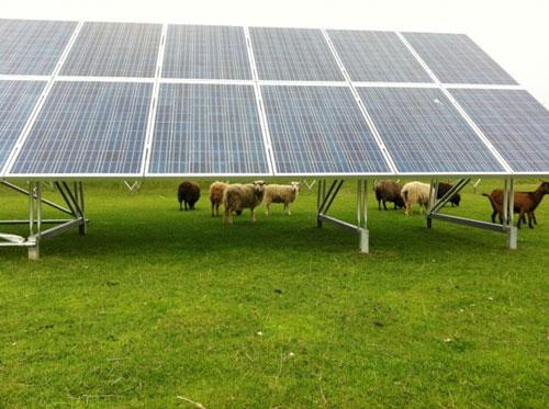Milieufederatie Noord-Holland en regionaal bedrijfsleven ontwikkelen alternatieve RES