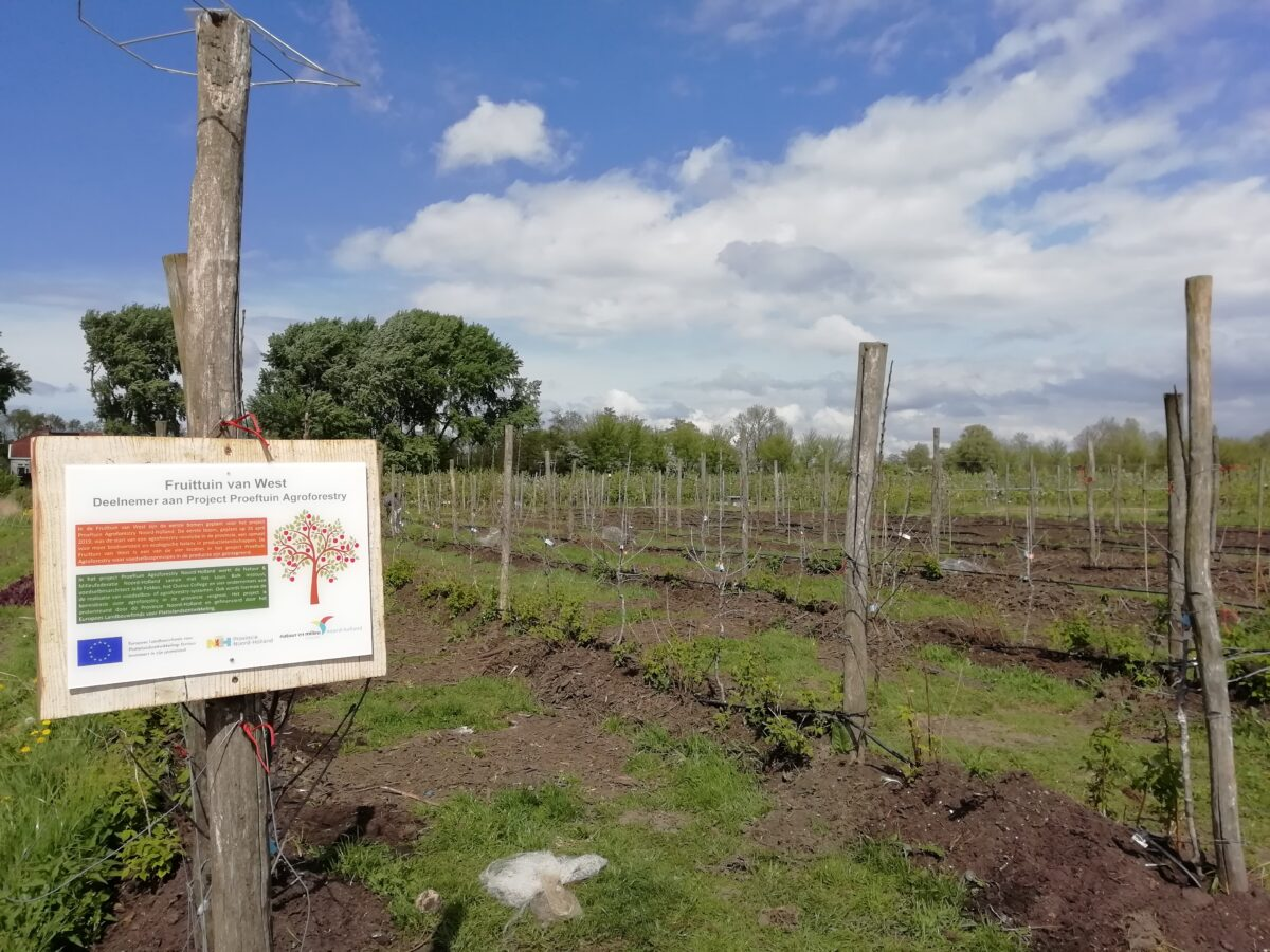 Proeftuin Agroforestry succesvol van start