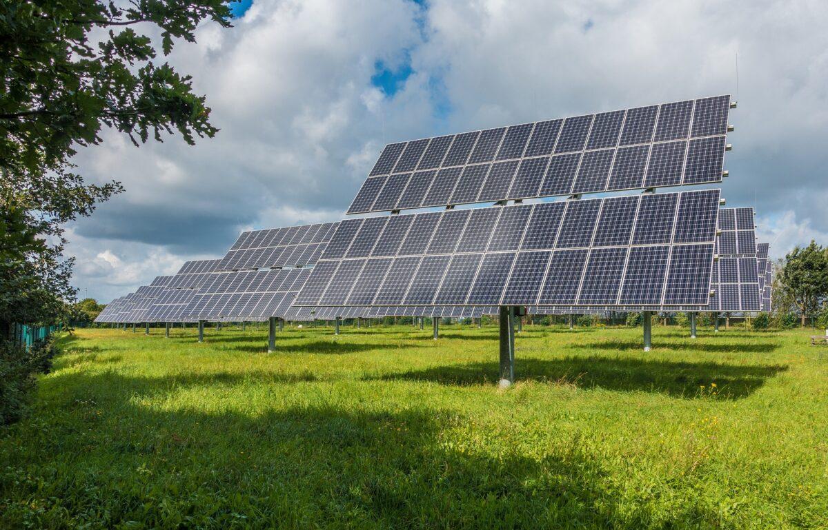 Natuur- en milieuorganisaties roepen op tot zorgvuldige locatiekeuze windmolens en zonneweides