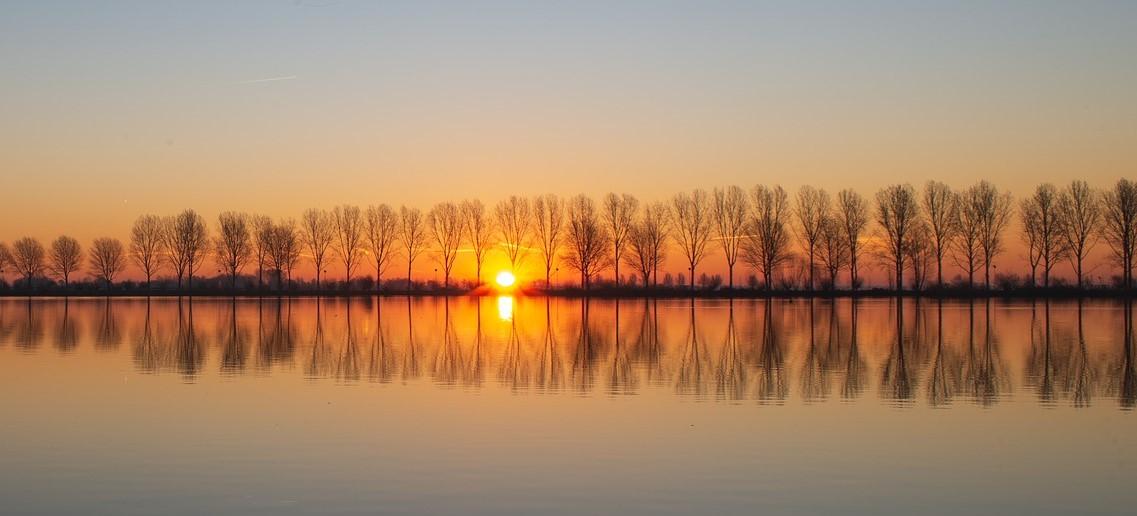 Loop de zon tegemoet tijdens het Ontwakend Landschap